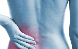 Киста почки по коду МКБ-10: причины, симптомы, диагностирование